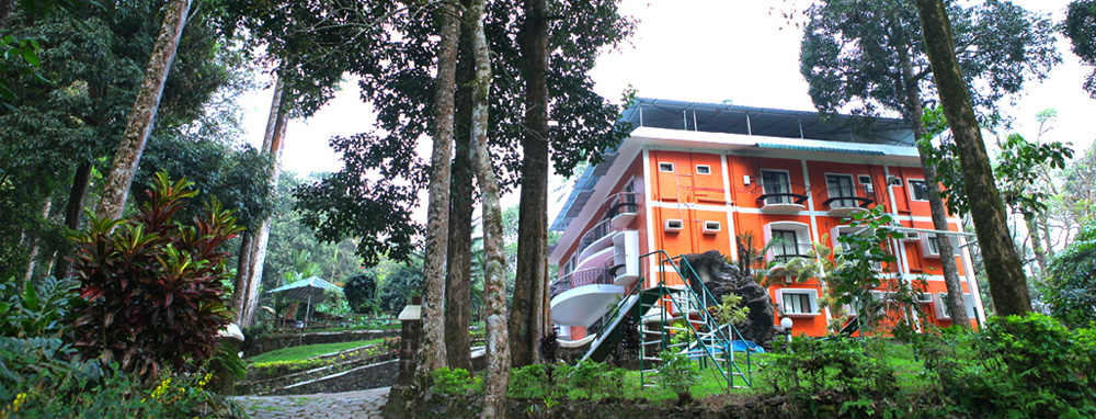 Forest Haven Resort, Munnar